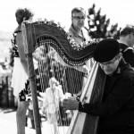 El Epigonio: un instrumento musical revivido