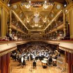 Tocar en orquestas profesionales. ¿Misión imposible?