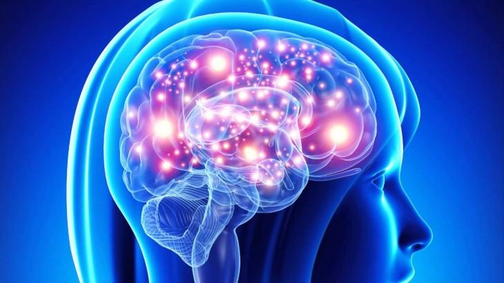 cerebro-musica-formación