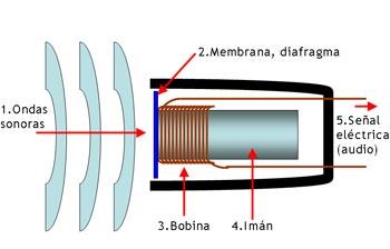 micrófono-dinámico-funcionamiento