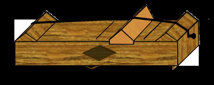 monocordio pitagoras
